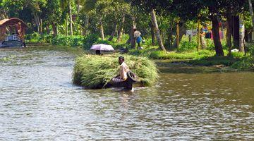 India - Kerala - 012 - local transport